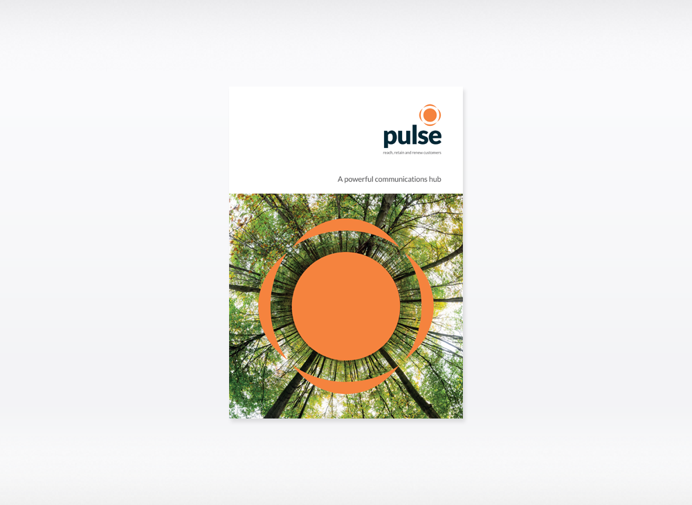 Pulse brochure cover