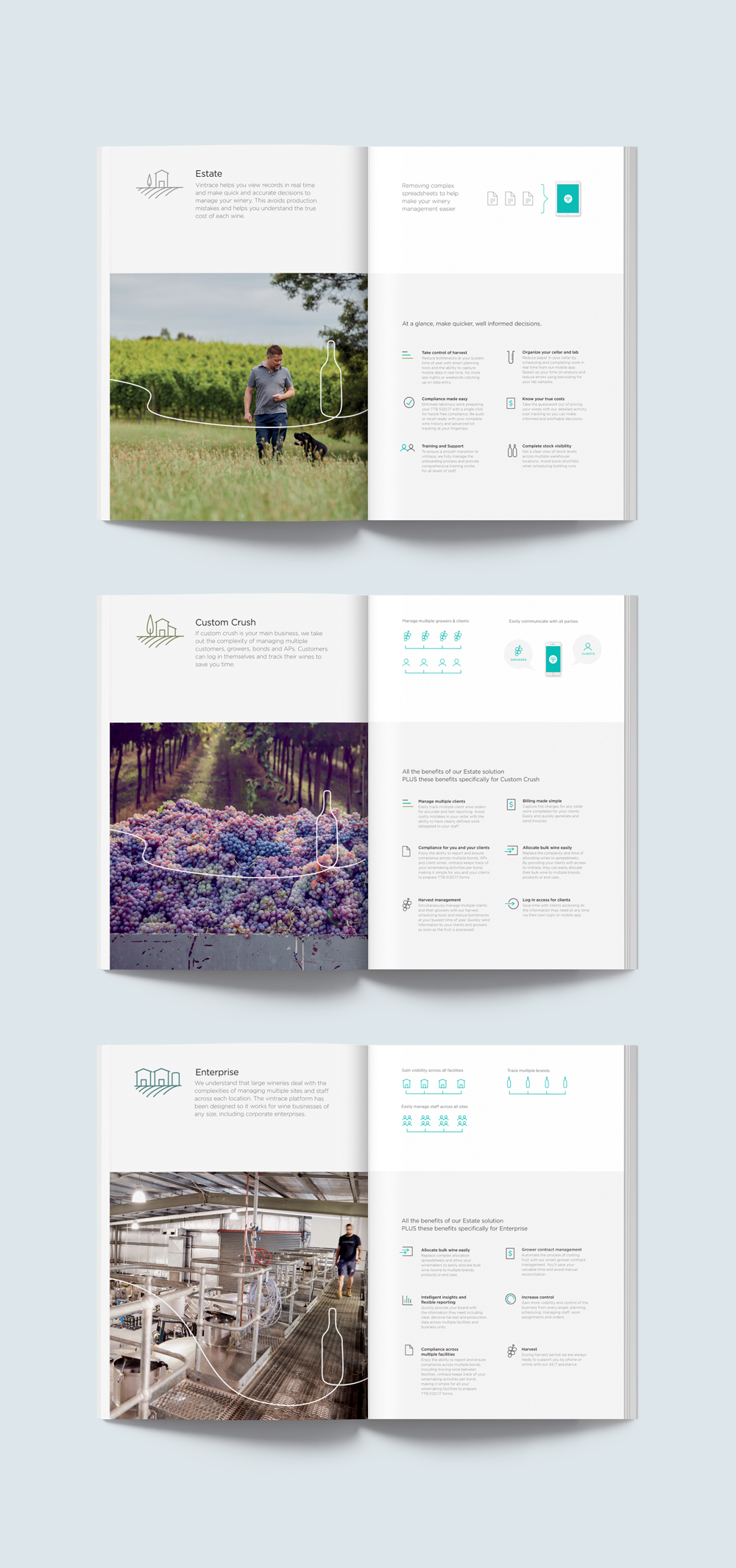 Vintrace branding graphic design brochure